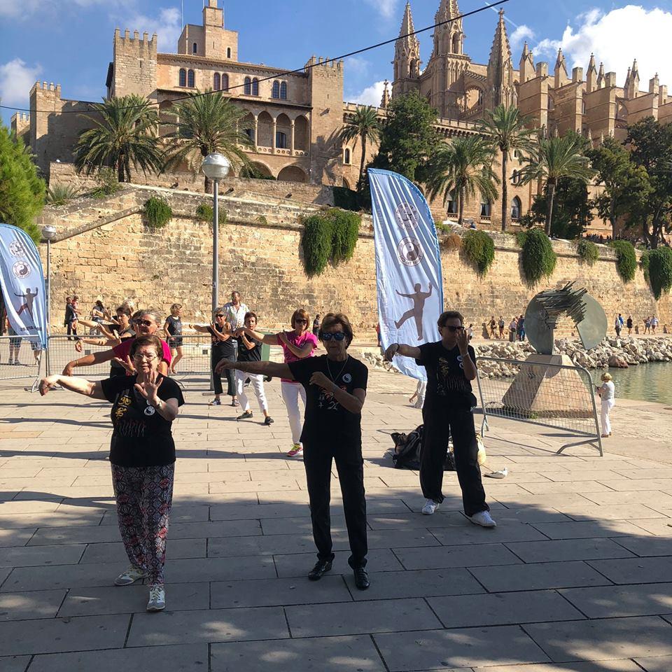 Demonstrations at the Zafiro Palma Marathon – Mallorca – Spain